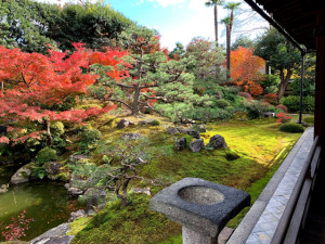 京都「両足院」の庭